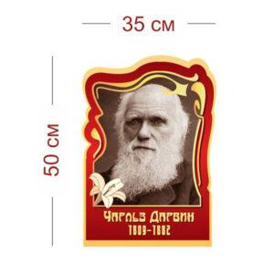 Стенд Чарльз Дарвин 35х50 см