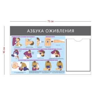 Стенд «Азбука оживления» (1 карман А4 + 1 плакат)