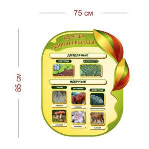 Стенд Царства живой природы 75х85 см